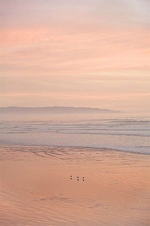 Evening Whispers I (Pismo Beach)