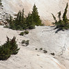 Encrusted Landscape, Bumpus Hell