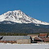 Mt. Shasta From McCloud