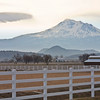 Mt. Shasta Morning