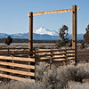 Mt. Shasta Through The Gate