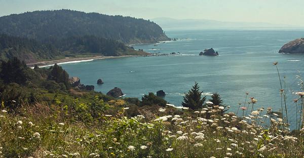 Northern California Coast (Del Norte County)