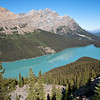 The Iconic Shot Of Peyto Lake (Banff NP)