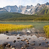 Waterfowl Lakes I