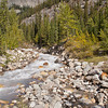 Creek Along Icefields Parkway