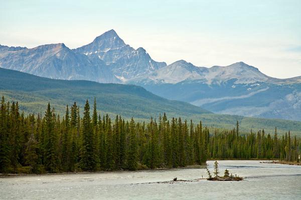 Athabasca River Island