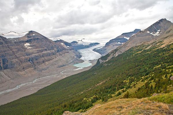 Saskatchewan Glacier from Parker Ridge