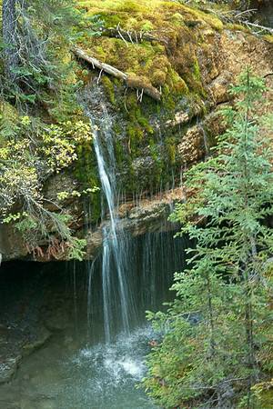 Weeping Rock in Maligne Canyon