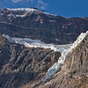 Mt. Edith Cavell & Angel Glacier