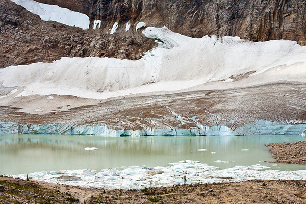 At the Foot of the Glaciers (Mt. Edith Cavell)