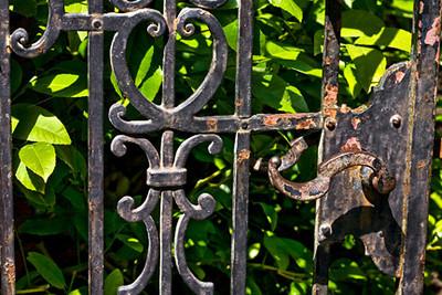 Rusty Gate III (Filoli Gardens)