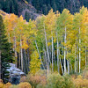 Fall in the Canyon, Lundy Canyon