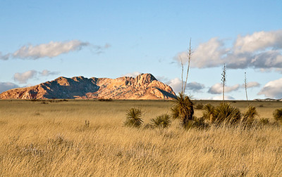 Apache Homeland