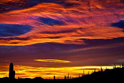 Sabino Canyon Sunset II