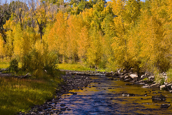 Fall Along the Cimarron