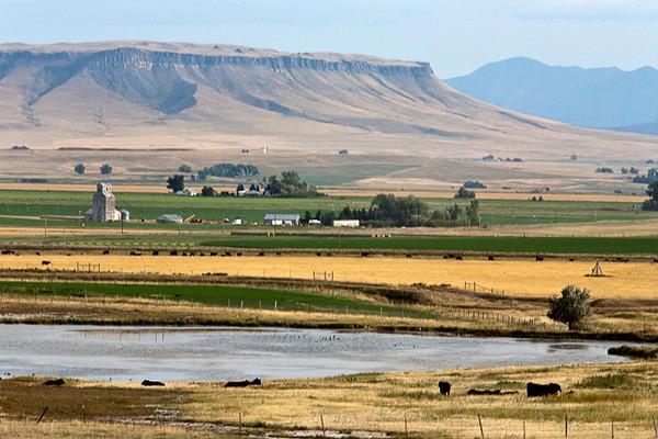 Montana Ruralscape