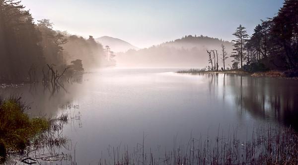 Misty Morning on Garrison Lake