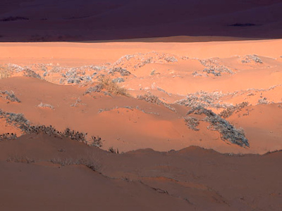 Pink Coral Dunes in Storm Light