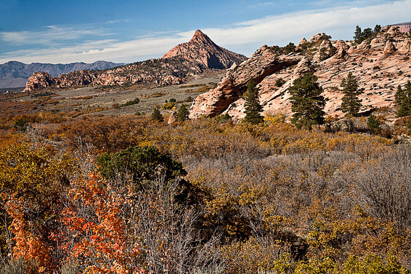 Autumn On Kolob Terrace III