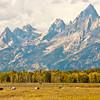 At Home by the Teton Range