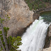 Lower Yellowstone Falls Viewpoint
