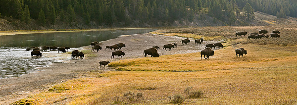 Crossing the Yellowstone (2-image composite)