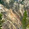 Yellowstone Canyon VII