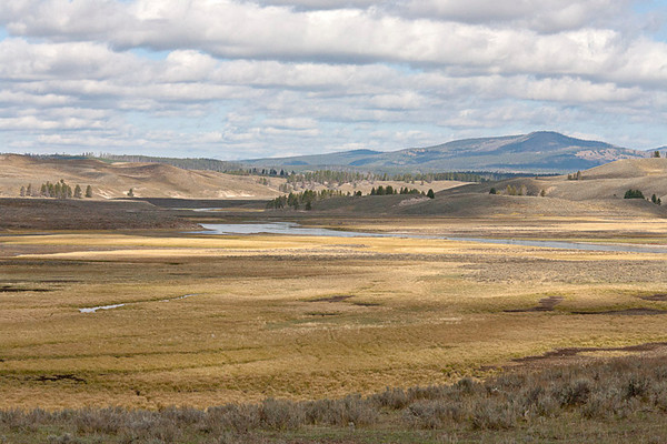 The Meandering Yellowstone River