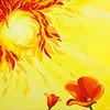 Poppy & Sun