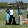 "Agility Titles : Images in these galleries are unedited. No cropping, color correction, or ""cleaning up"" has been done. If you would like to see what a picture would look like once it is proofed, please send an email to richknecht@comcast.net with any text you would like added to these images"