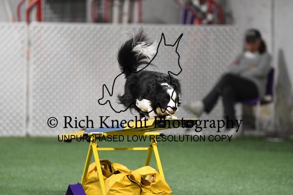 KC1_0375