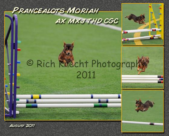 8x10 montage print proof