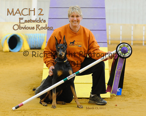 8x10 print of Bonnie and Rodeo with their MACH 2 ribbons.