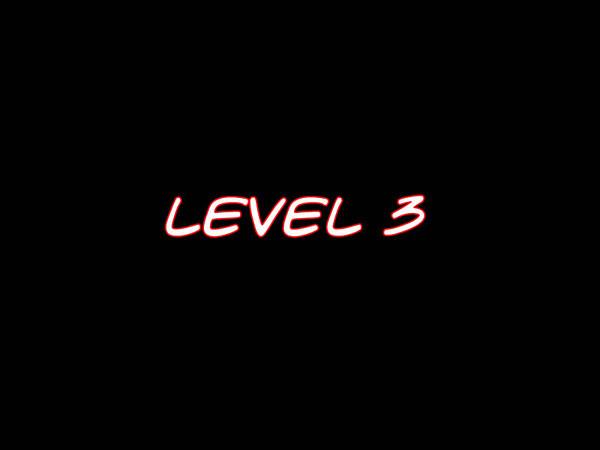 levle3