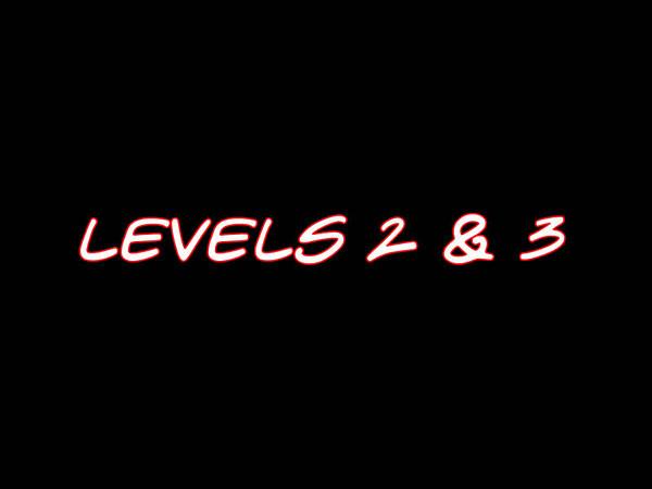 Levels23