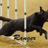 Rangerplate3