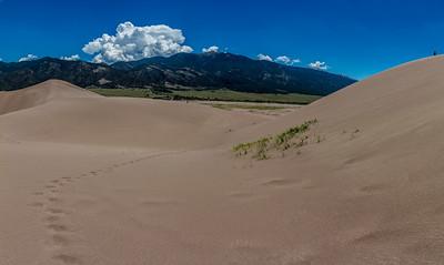 Sand-Dunes-NP29