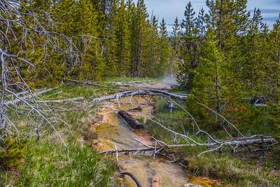 Yellowstone-NP-241