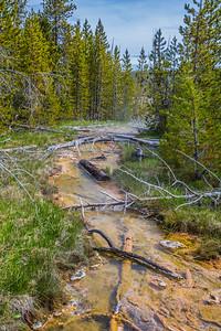 Yellowstone-NP-243