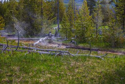 Yellowstone-NP-239