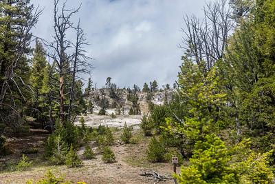 Yellowstone-NP-060