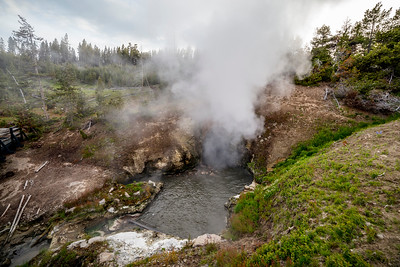 Yellowstone-NP-225