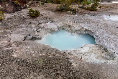 Yellowstone-NP-092