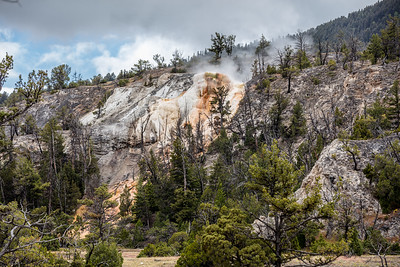 Yellowstone-NP-059