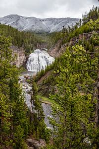 Yellowstone-NP-043