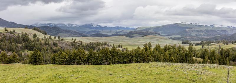 Yellowstone-NP-072