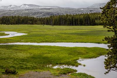 Yellowstone-NP-051
