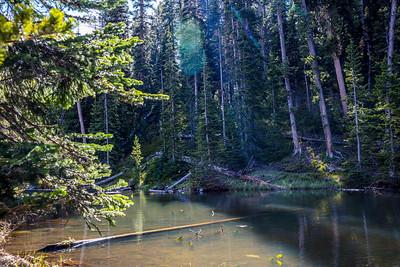 Yellowstone-NP-169