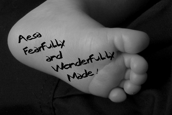 fearfullly and wonderfully made