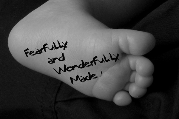 fearfullly and wonderfully made2